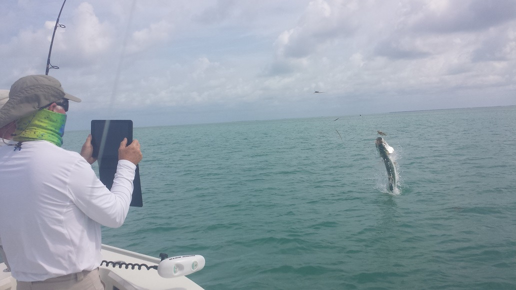 6 10 15 june tarpon fishing keys islamorada islamorada for Islamorada tarpon fishing