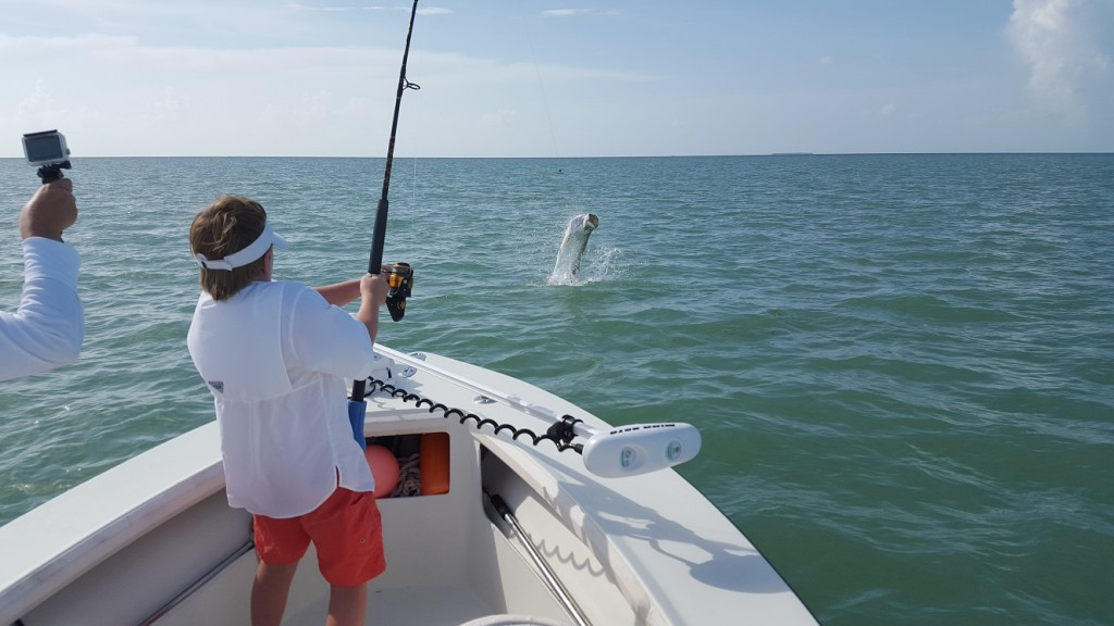 Late summer islamorada tarpon fishing report saltwater for Islamorada tarpon fishing