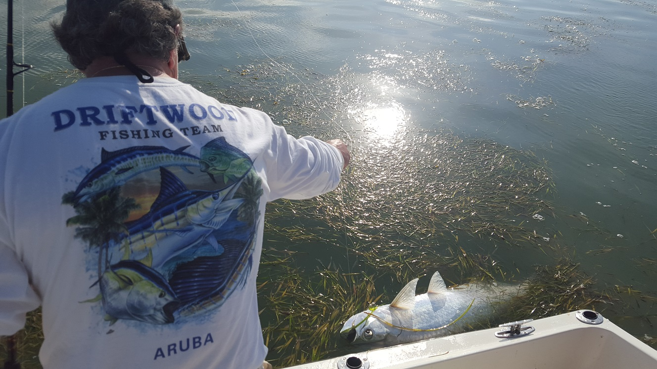 52016tarpon islamorada tarpon fishing for Islamorada tarpon fishing